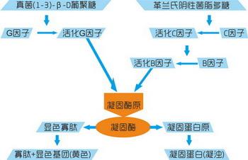http://www.zacb.com/images/yl.jpg