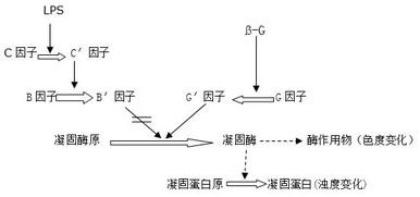 http://www.zacb.com/images/g2.jpg